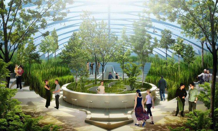 The air garden aboard Physalia