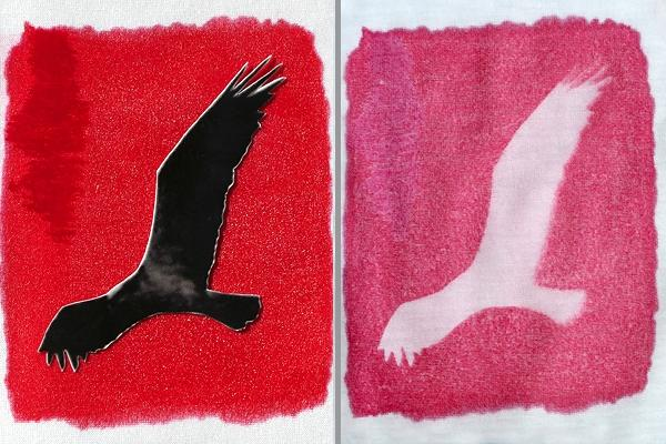 Inkodye light-sensitive dye can be applied on fabrics (cotton, linen, silk), or on wood (Photo: Photojojo)