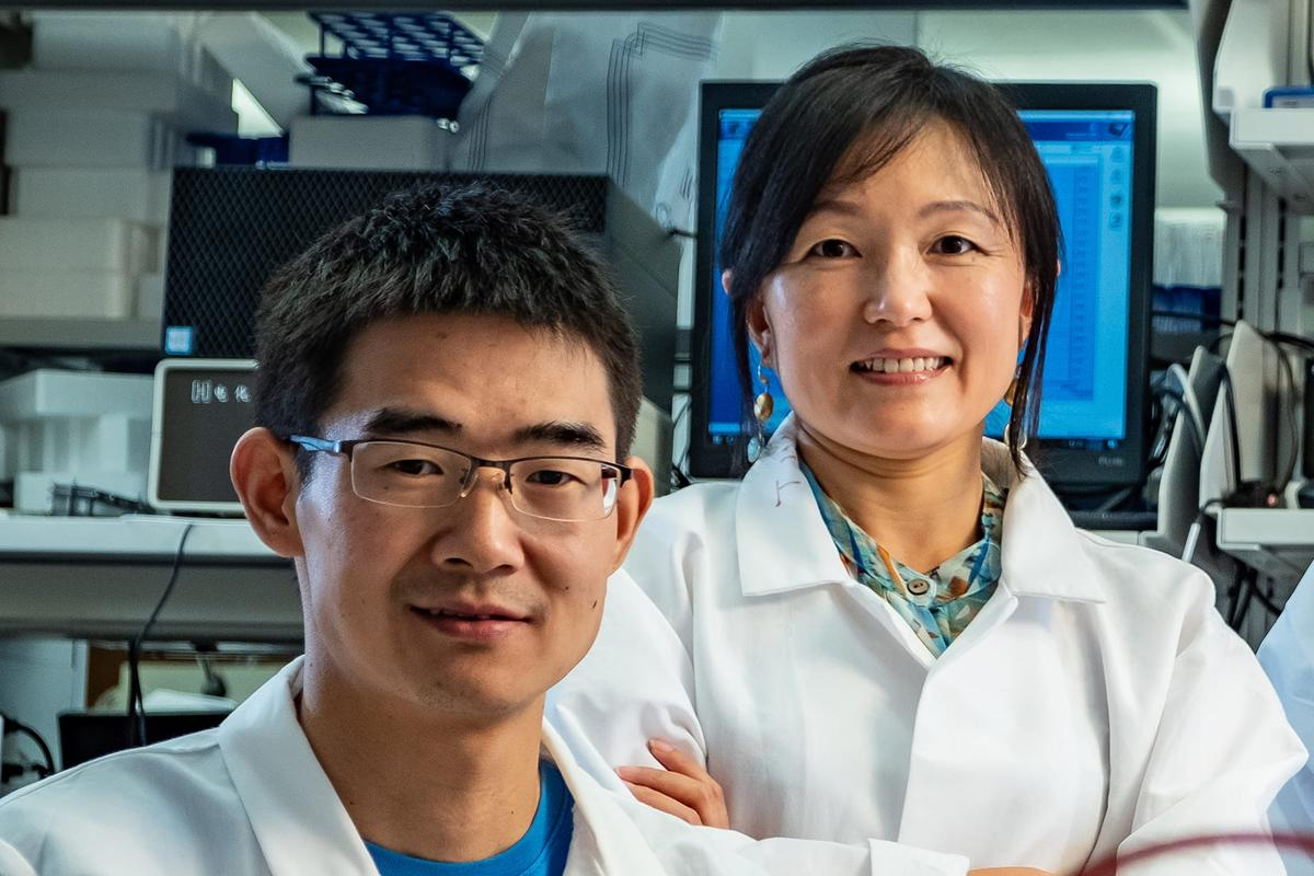 Study authors Kuichang Zuo (left) and Qilin Li have developed a new type of desalination device that can stand up to hypersaline brine