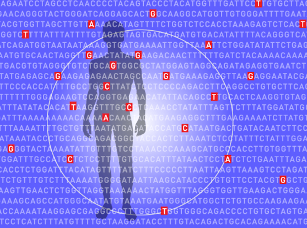 The algorithm examines millions of places in a single genome to calculate a person's overall genomic risk factor for developing certain diseases