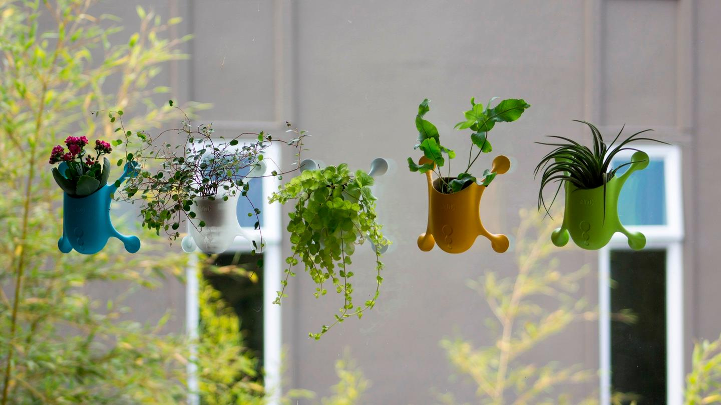 """With four micro-suction pads on the products' """"arms,"""" the idea is to allow Livi users to grow their favourite plants pretty much anywhere, even if they're lacking window ledge space"""