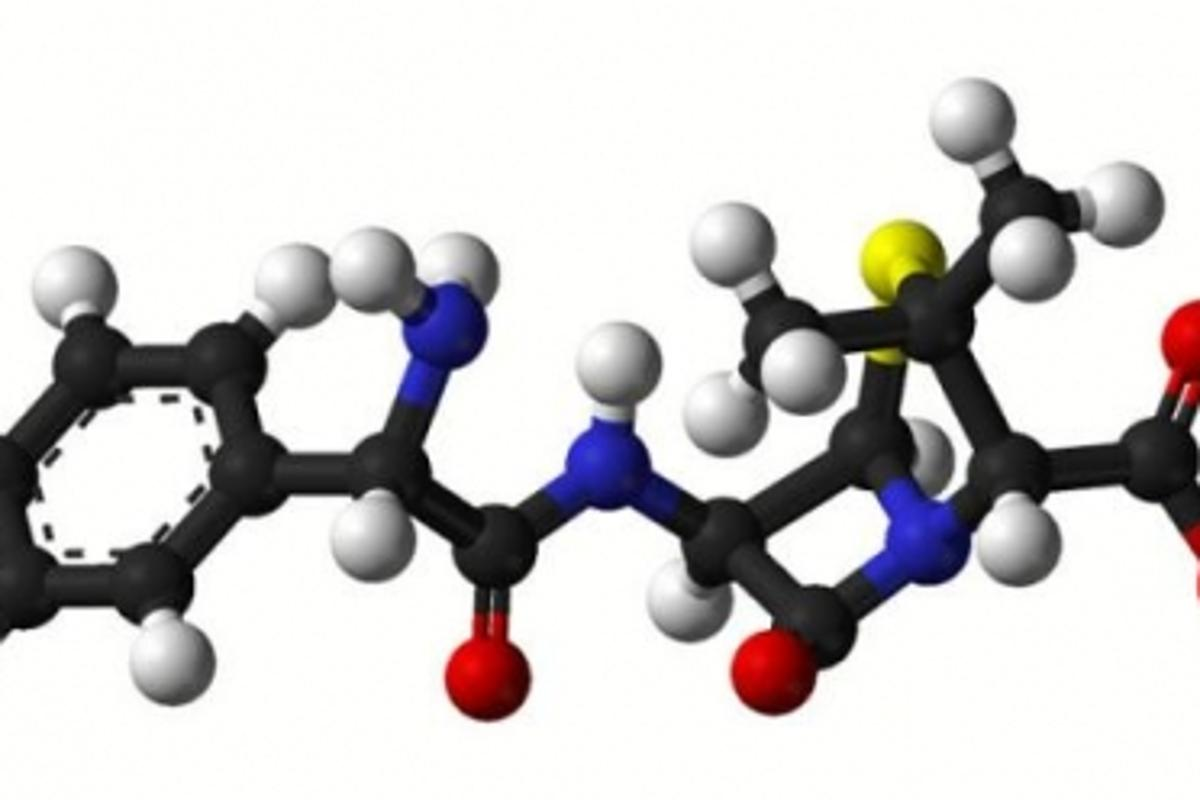 Study recommends initial treatment with oral amoxicillin Image Credit: wikipedia.org