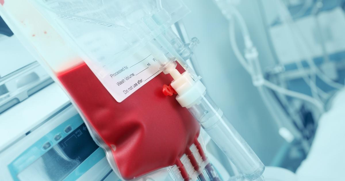 Enzymes produced by gut bacteria can make universal blood more efficiently