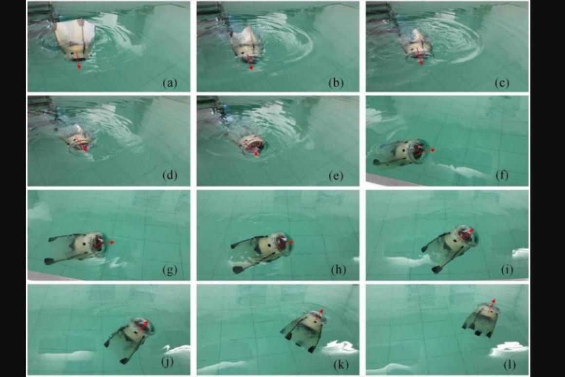 The jellyfish robot gets tested in a pool