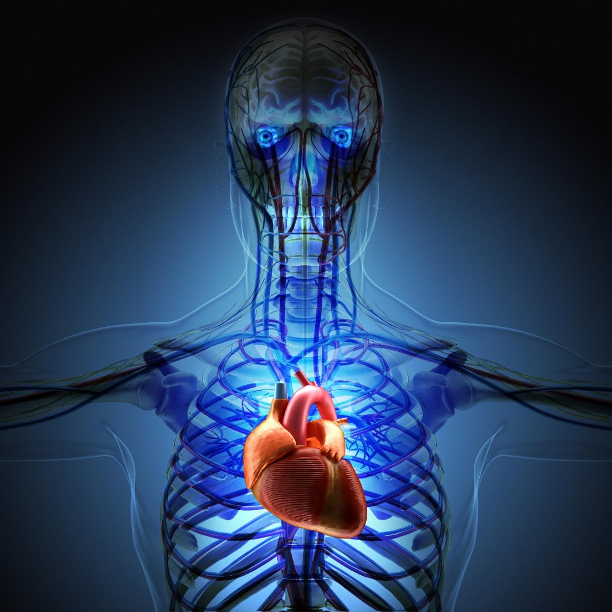 Scientists hope to use carbon nanofibers to mend broken electrical circuits in the heart