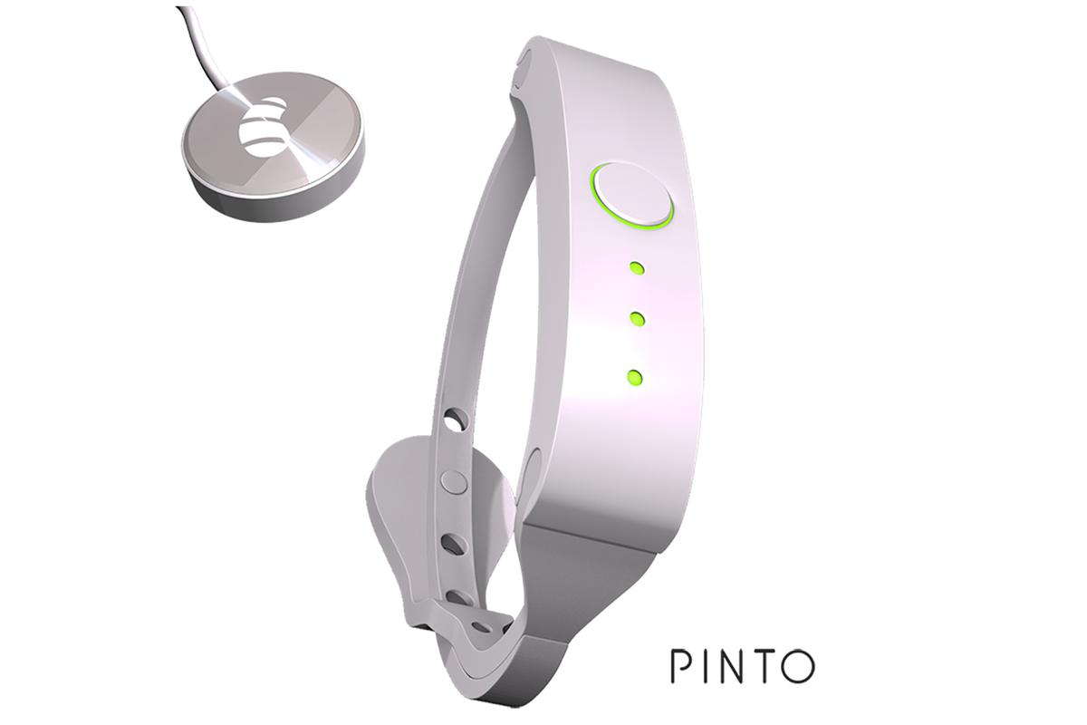 The Pinto wristband lets users carry their files on their wrist, and offers password protection