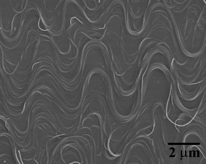 Scientists have developed a new method of creating elastic conductors, using buckled carbon nanotubes that form into squiggly lines
