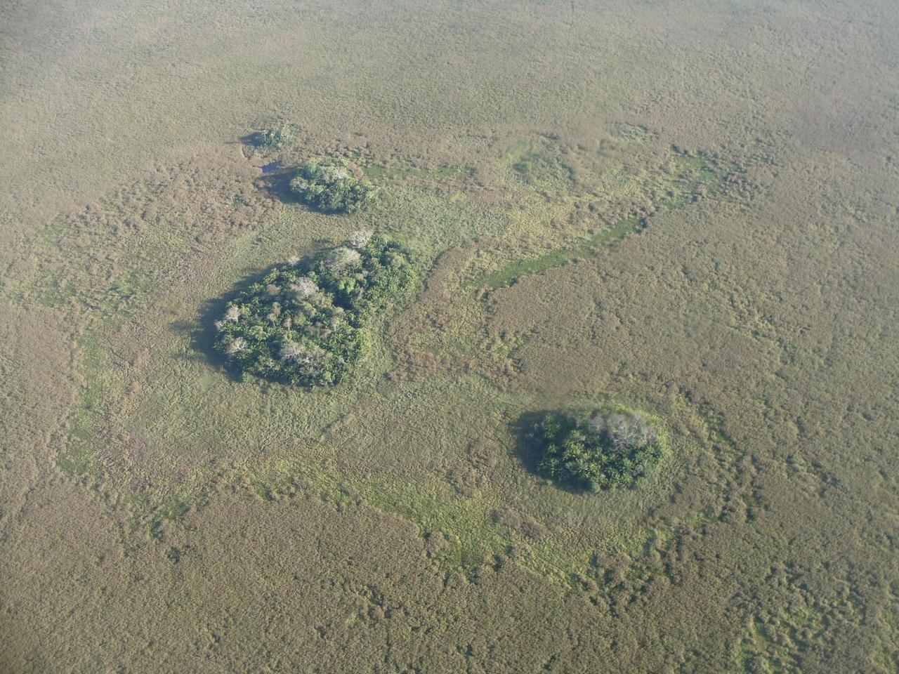 An aerial view of three of the forest islands