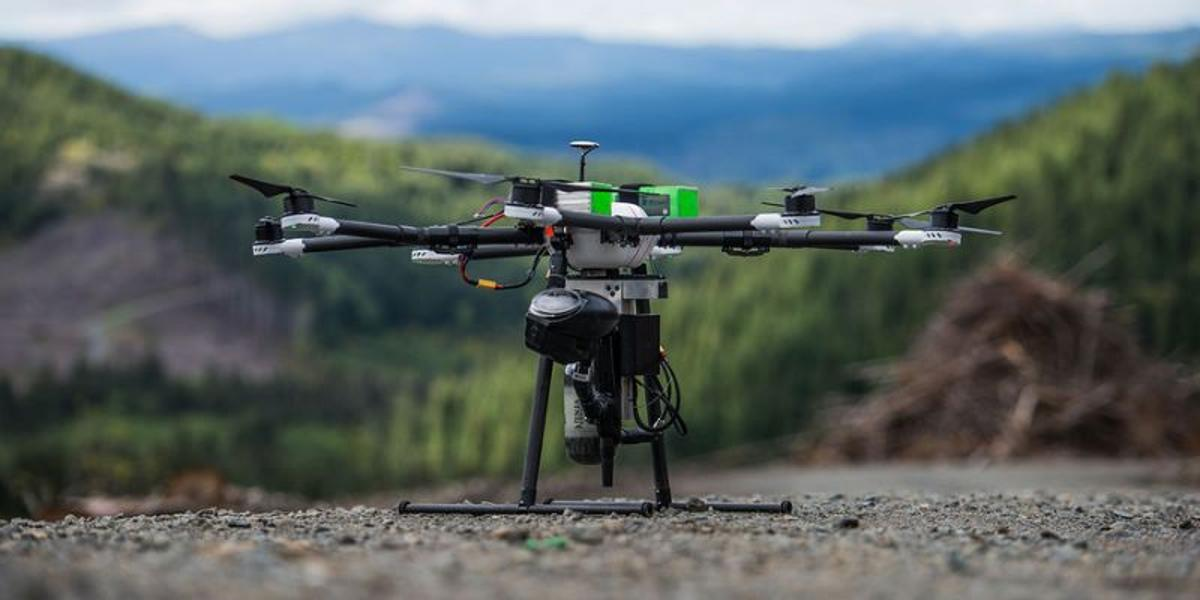 DroneSeed's drones would rapidly reforest logged lands by planting seeds, spraying for invasive species, and monitoring the tree growth process