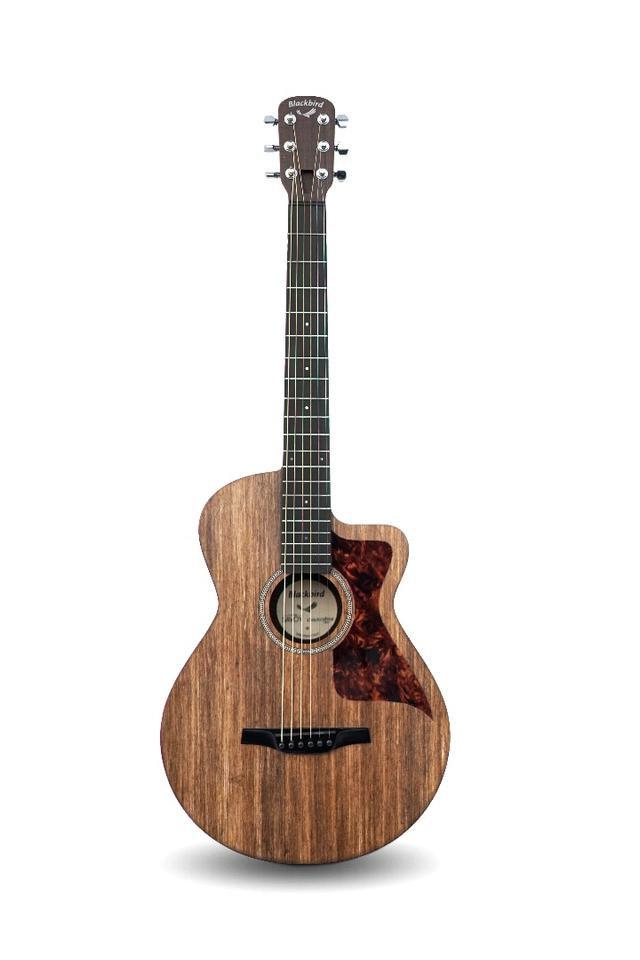 The Savoy small body acoustic guitar hasa 20-fret, 25.4-inch scale length neck that meets the top of the body at the 12th fret and the bottom horn at the 15th for easier access to higher fingerboard positions