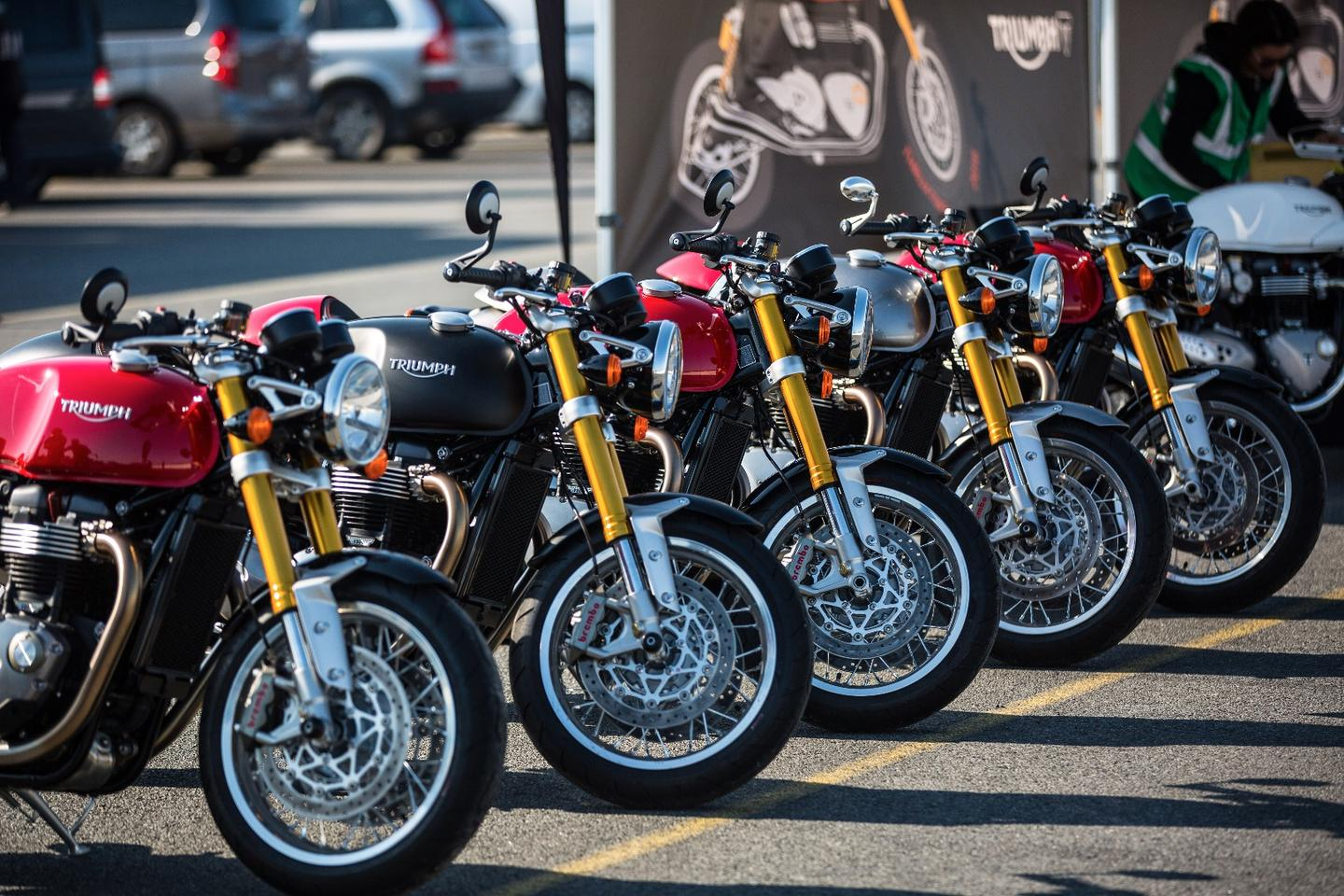 Triumph Thruxton R: bikes lined up for the Australian press launch at Murray Valley Training Centre