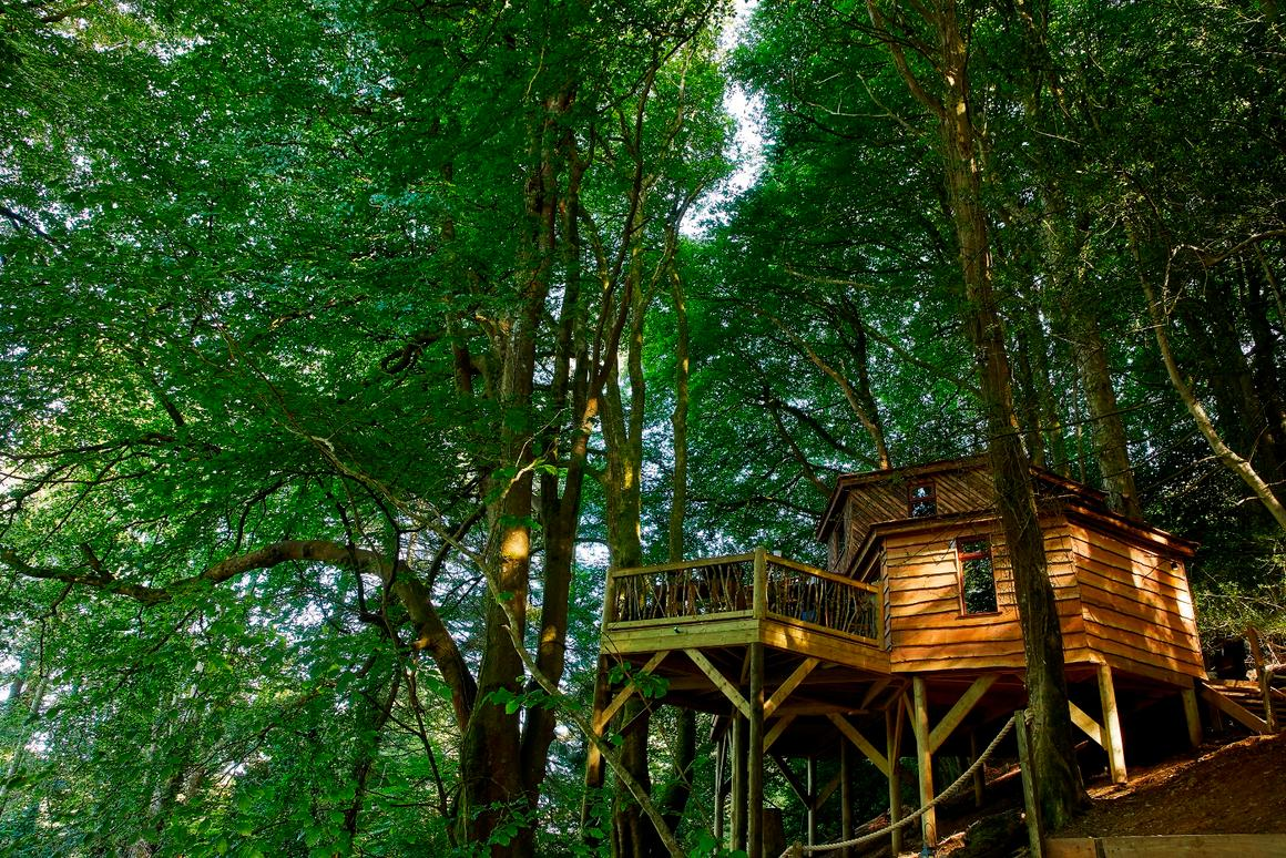The Treehouse at Ravendere Retreats