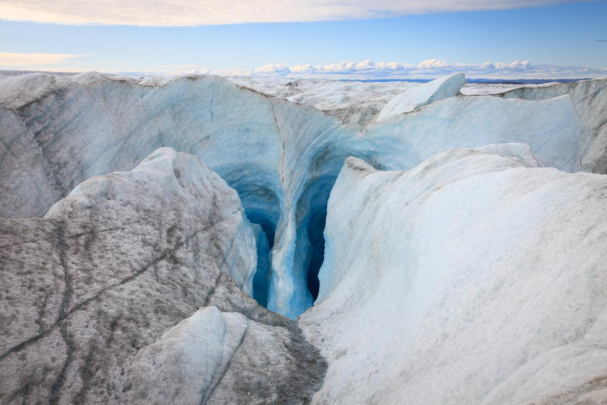 Scientists have discovered fossilized plants almost a mile under the Greenland ice sheet, which has worrying implications for climate change