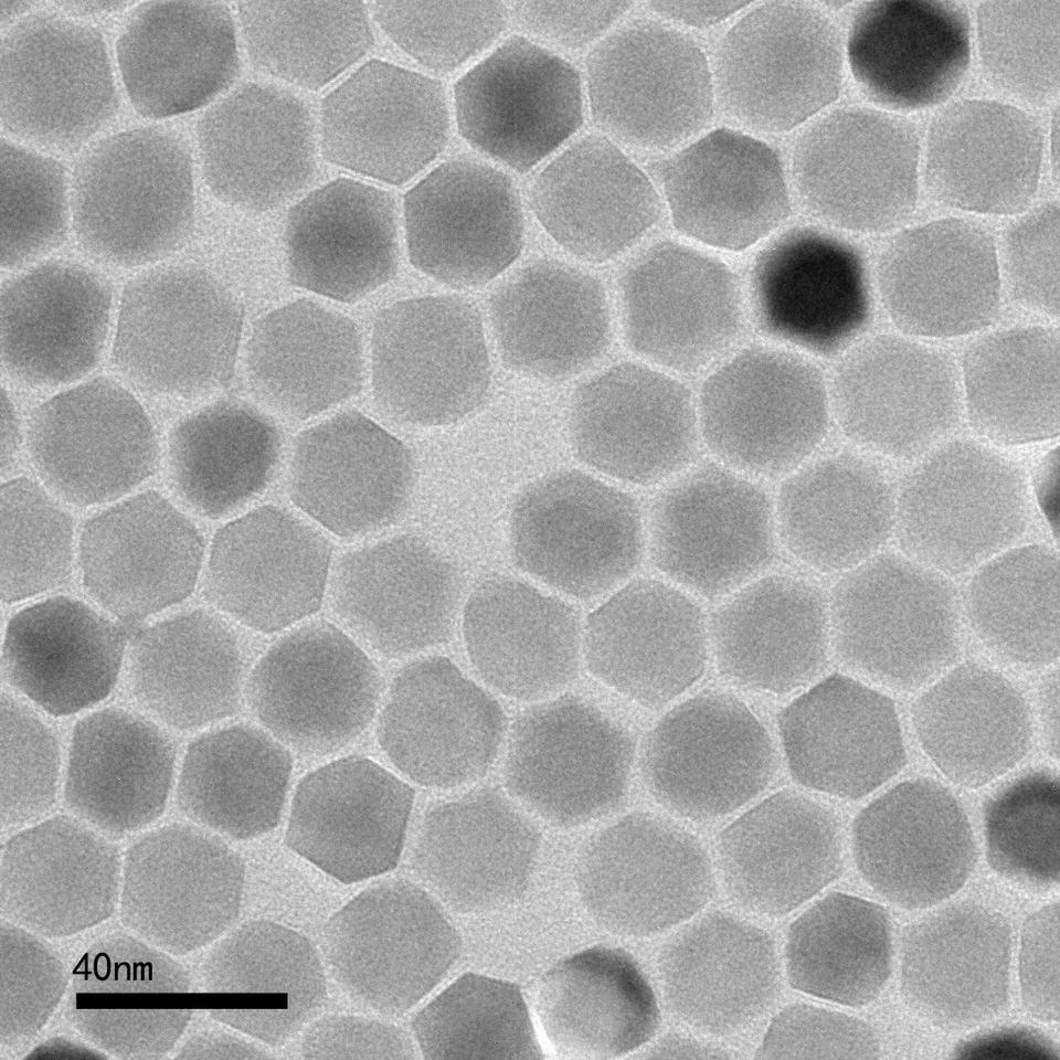 A transmission electron microscope image of the zinc ferrite nanoparticles that can be triggered by a magnetic field to heat up and kill cancer