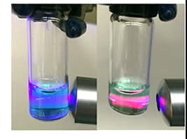 Researchers demonstrating how the test works: a blue glow means the enzyme has been blocked; a red one means that the virus has not been disrupted