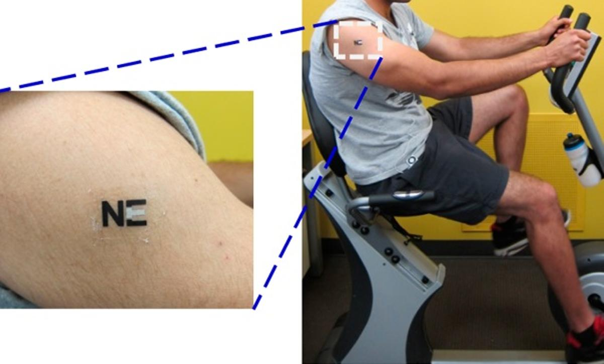 The lactate-monitoring biosensor tattoo on one of the test subjects