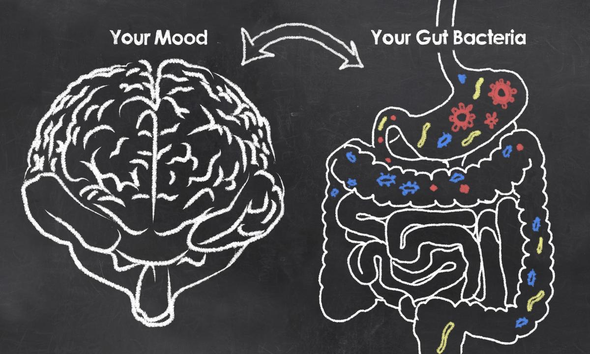 Examining over 1,000 people,a newstudy revealed two bacteria in particular as being strongly associated with mood and depression