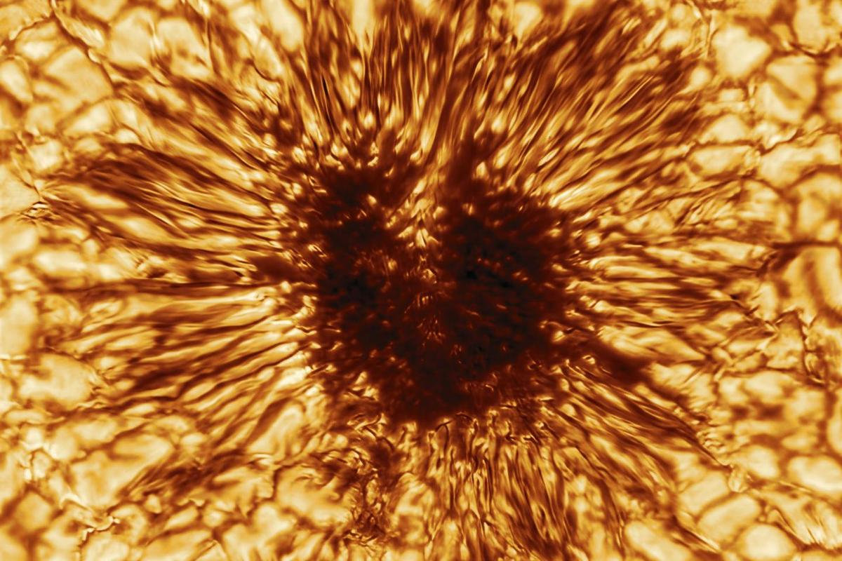 A high-resolution image of a sunspot captured by the NSF's Inouye Solar Telescope on January 28, 2020