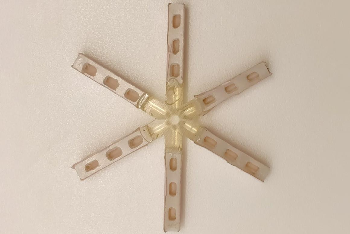 A pre-clinical prototype of the star-shaped drug delivery system