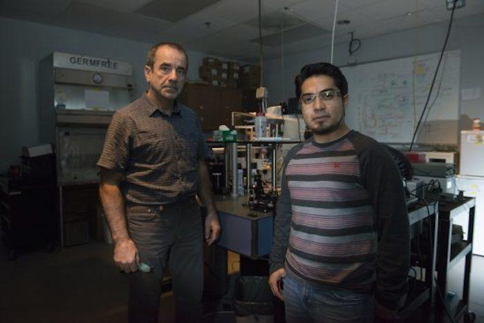 Professor Aristide Dogariu (left) and doctoral student Jose Rafael Guzman-Sepulveda (right) have developed an optical fiber system that monitors a patient's blood in real-time during surgery