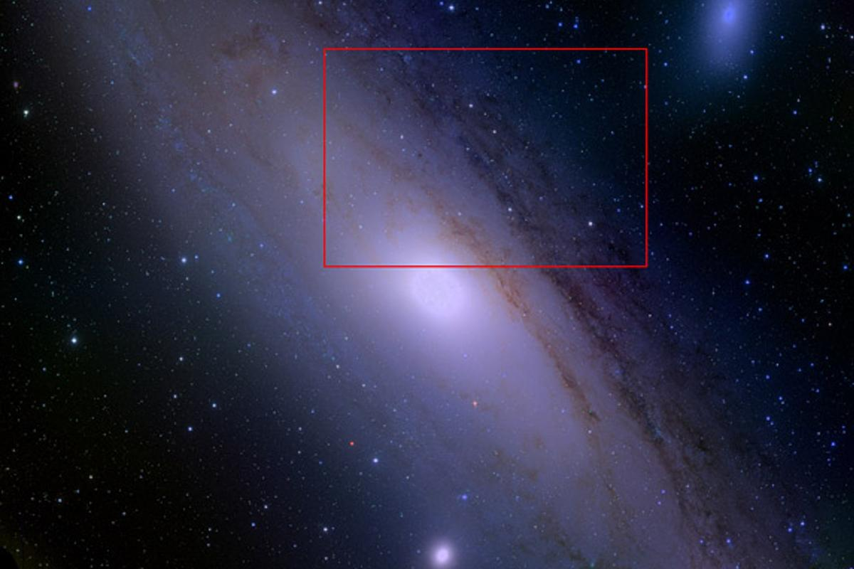 The HSC captured a high-resolution image of the entire Andromeda galaxy in one go (Image: Robert Lupton, HSC team)