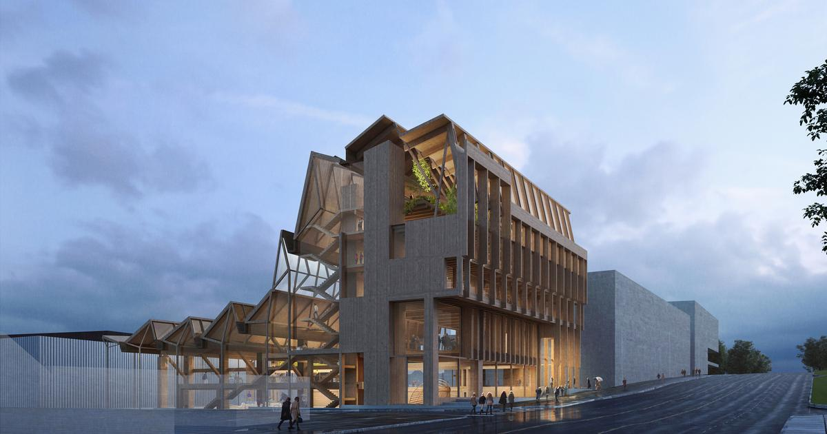 Grafton Architects' college building highlights versatility of wood