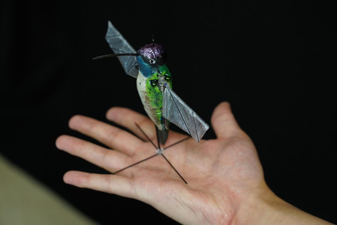 Purdue University researchers have developed a robotic hummingbird that can pull off the real thing's characteristic aerial stunts