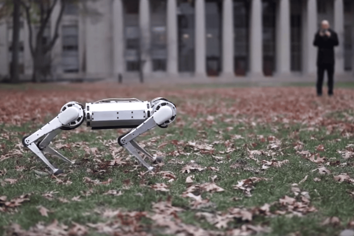 The MIT Mini Cheetah robot has a few tricks up its sleeve