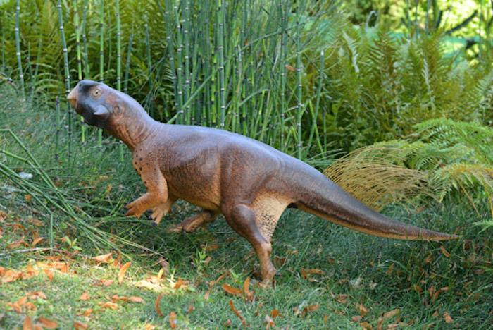 Researchers took a 3D model of a small herbivorous dinosaur to the University ofBristol Botanic Garden to determine its likely habit based on its countershading camouflage