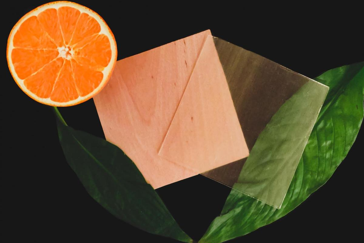 Scientists have used a monomer made from a component in citrus fruit peels called limonene to produce entirely sustainable transparent wood