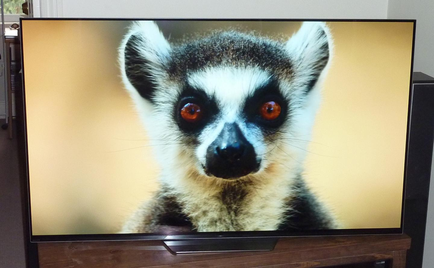 Review: Sony A8F OLED TV boasts brains and beauty