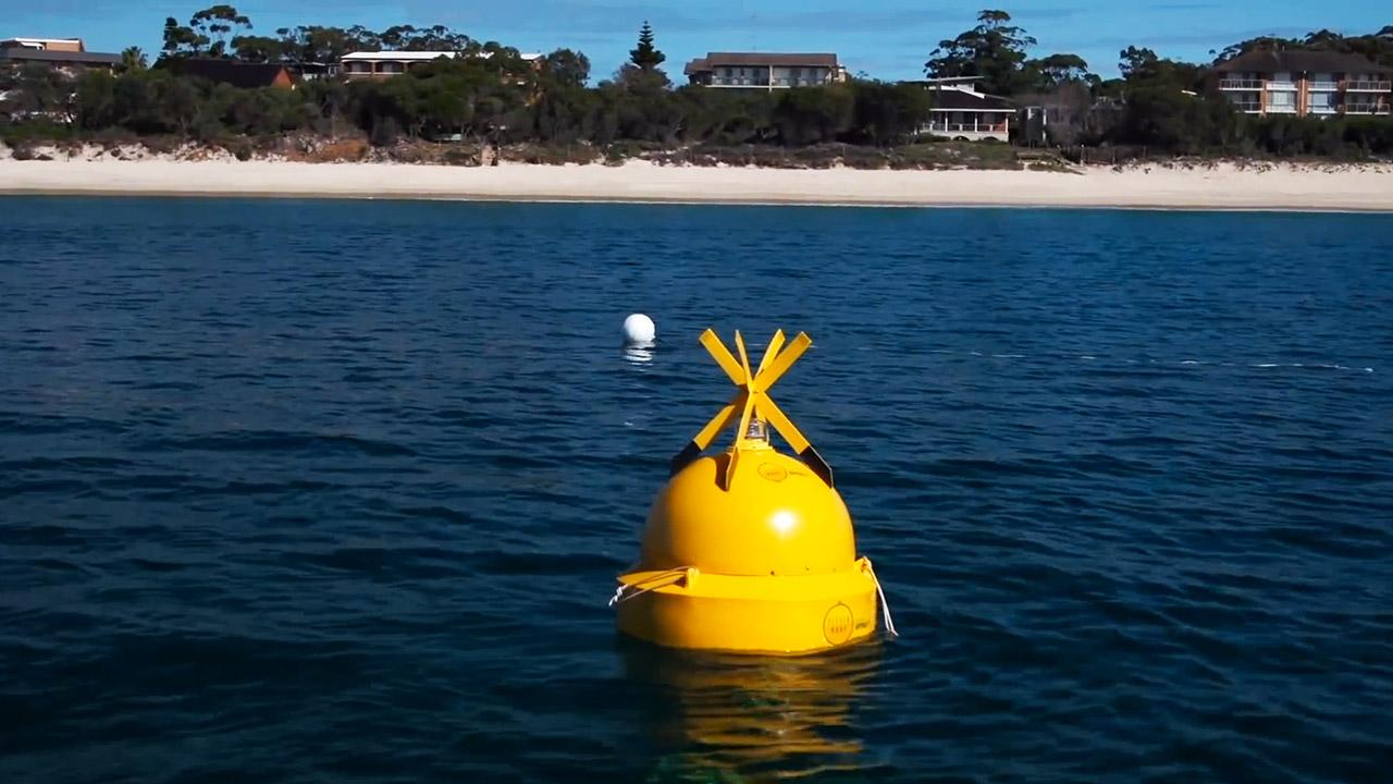 The Clever Buoy is designed to detect sharks and send alerts to lifeguards