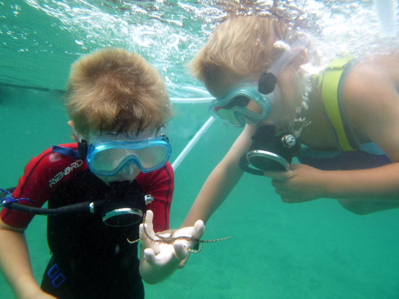The Snorkel Dive helps get kids comfortable with scuba diving