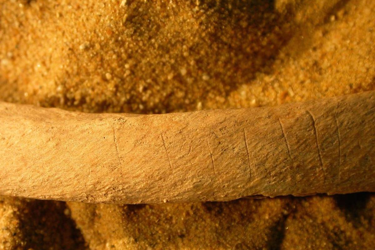 Archaeologists believe that medieval bones found with knife marks and evidence of being burned tell the tale of how the villagers of the time tried to defend themselves from the undead