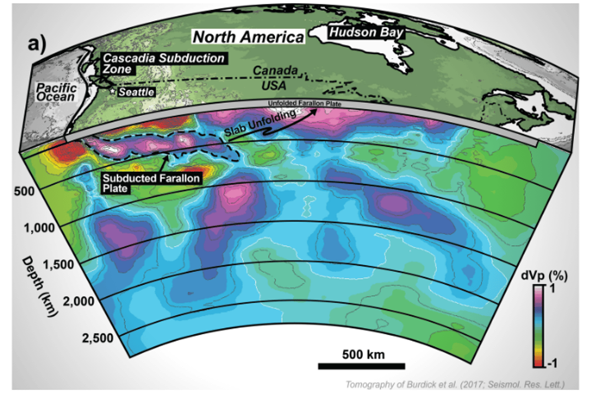 The team used a method called slab unfolding, which allows them to work backwards from the remains of a subducted plate and work out what it looked like on the surface, millions of years ago