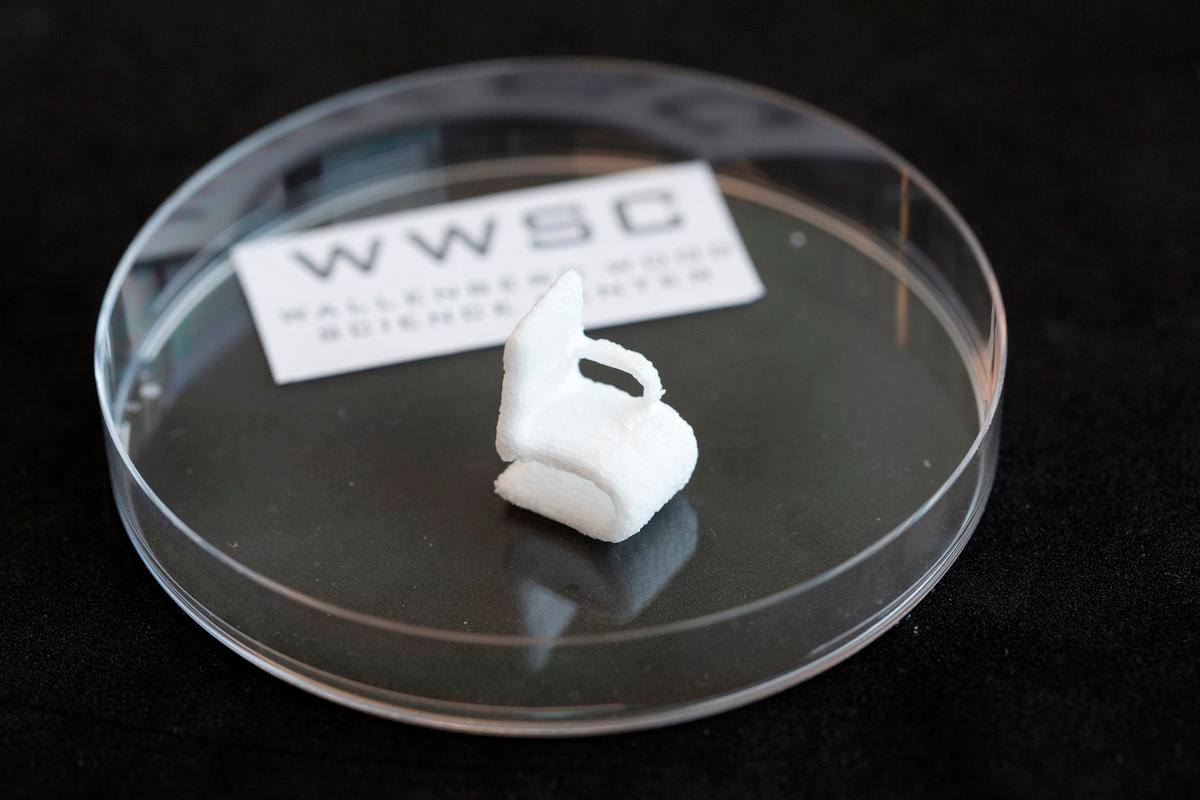 The same material that gives trees their structural integrity can now be used to 3D print tiny chairs, electrical circuits, and other objects