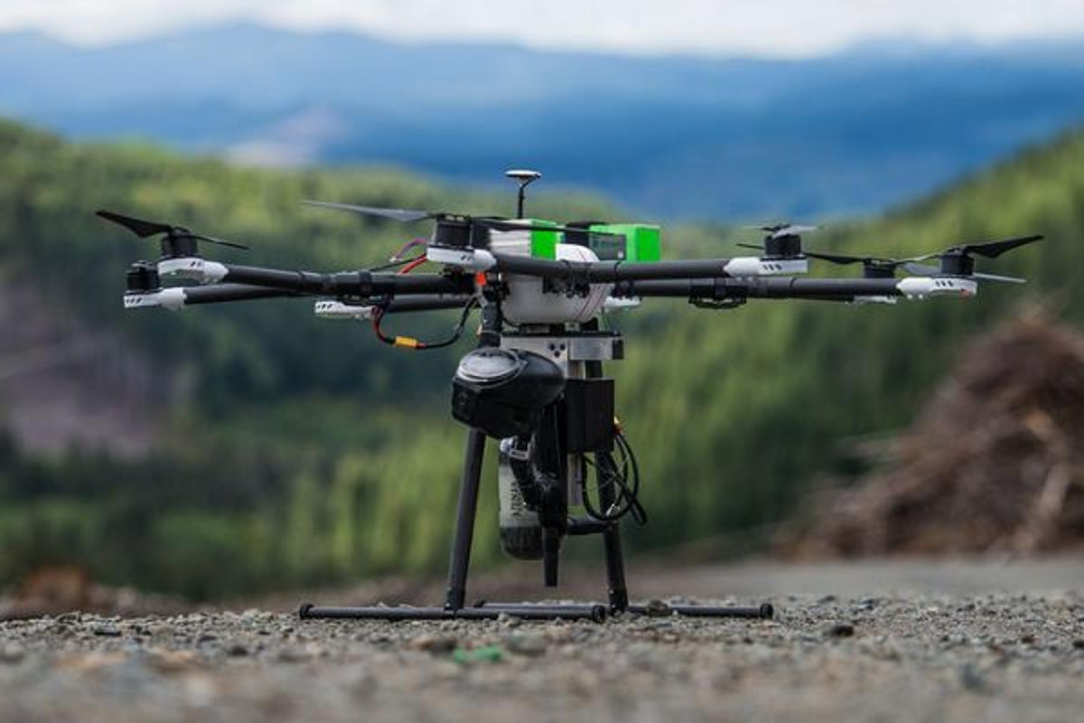DroneSeed's drones would rapidly reforest logged lands byplanting seeds, spraying for invasive species, and monitoring the tree growth process