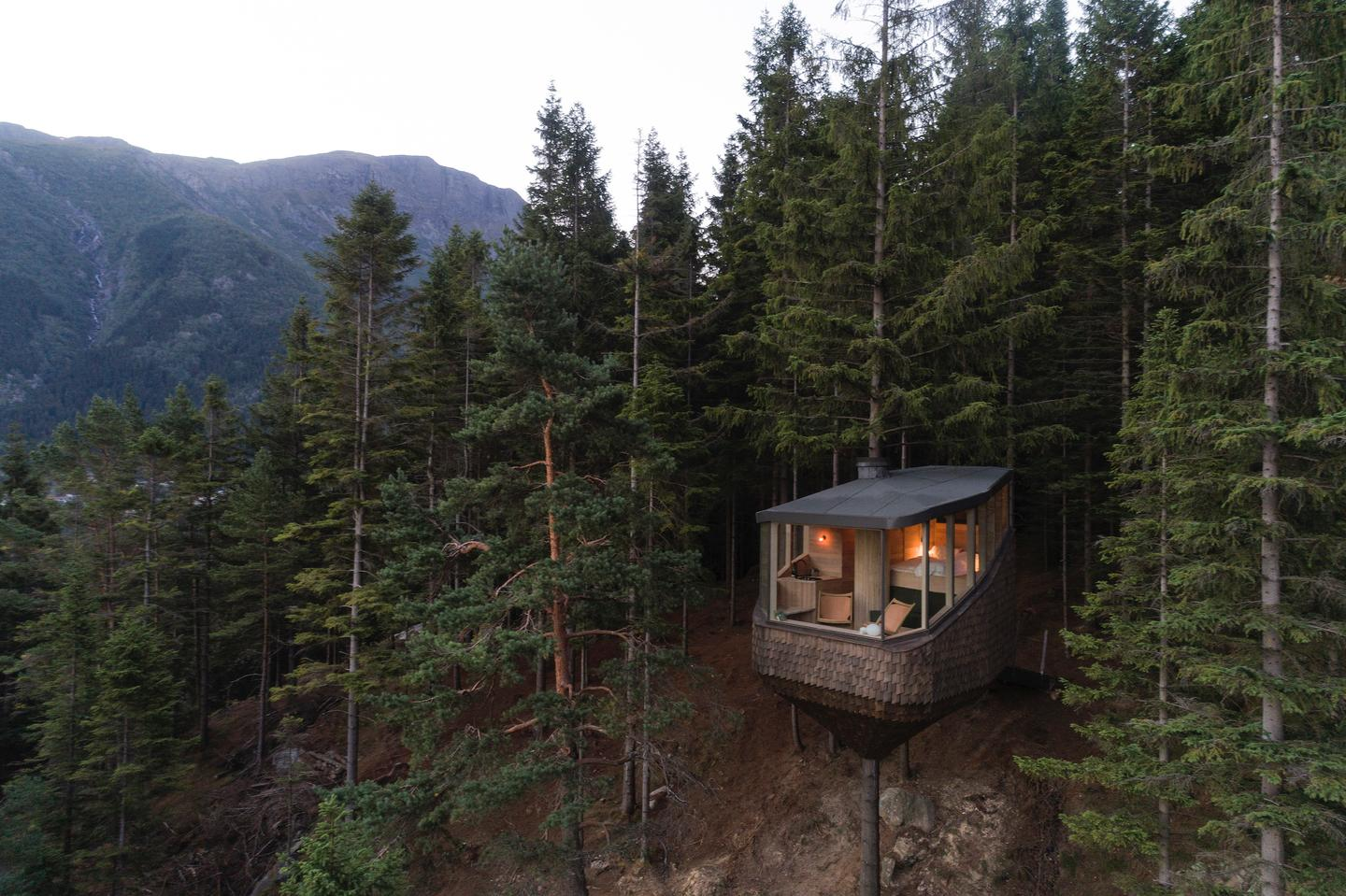 Woodnest is located in a forest near the Hardangerfjord in Odda, Norway