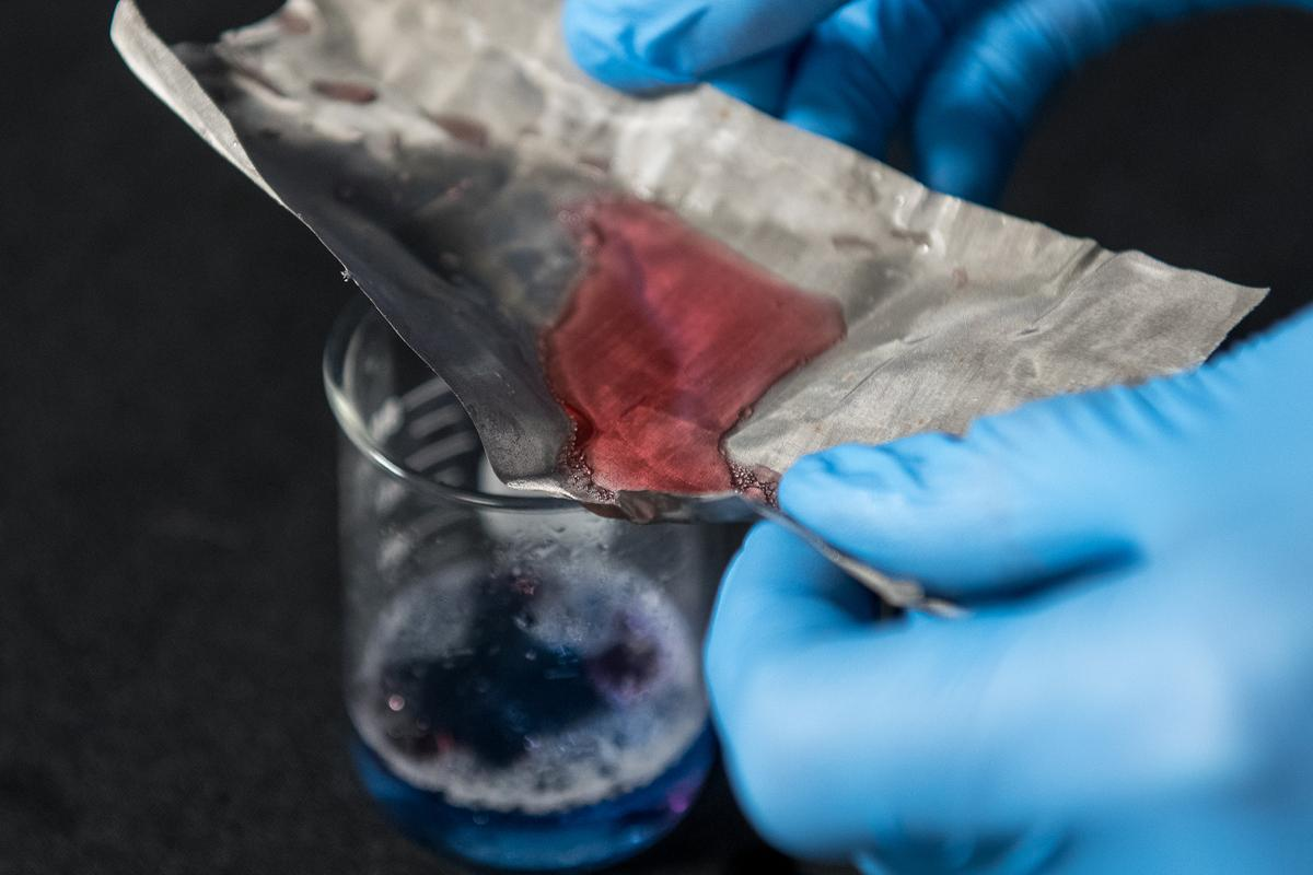 The mesh lets water through (blue) but holds back oil (red) (Photo: Jo McCulty/The Ohio State University)