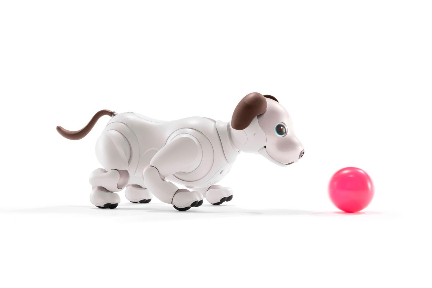 "The ""First Litter Edition"" aibo bundle includes the robot pup, subscription to a cloud-based AI system and some toys, including this pink ball"
