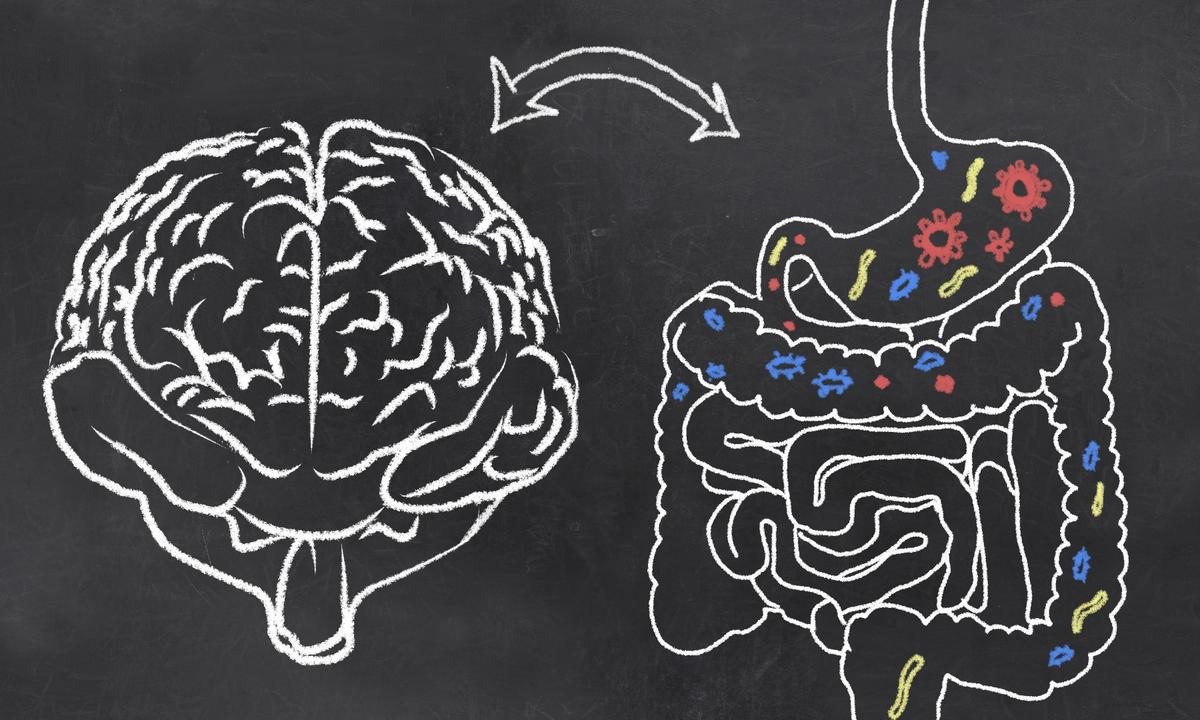 A new study shows that a person's gut microbiota can be positively altered through non-invasive transcranial magnetic stimulation