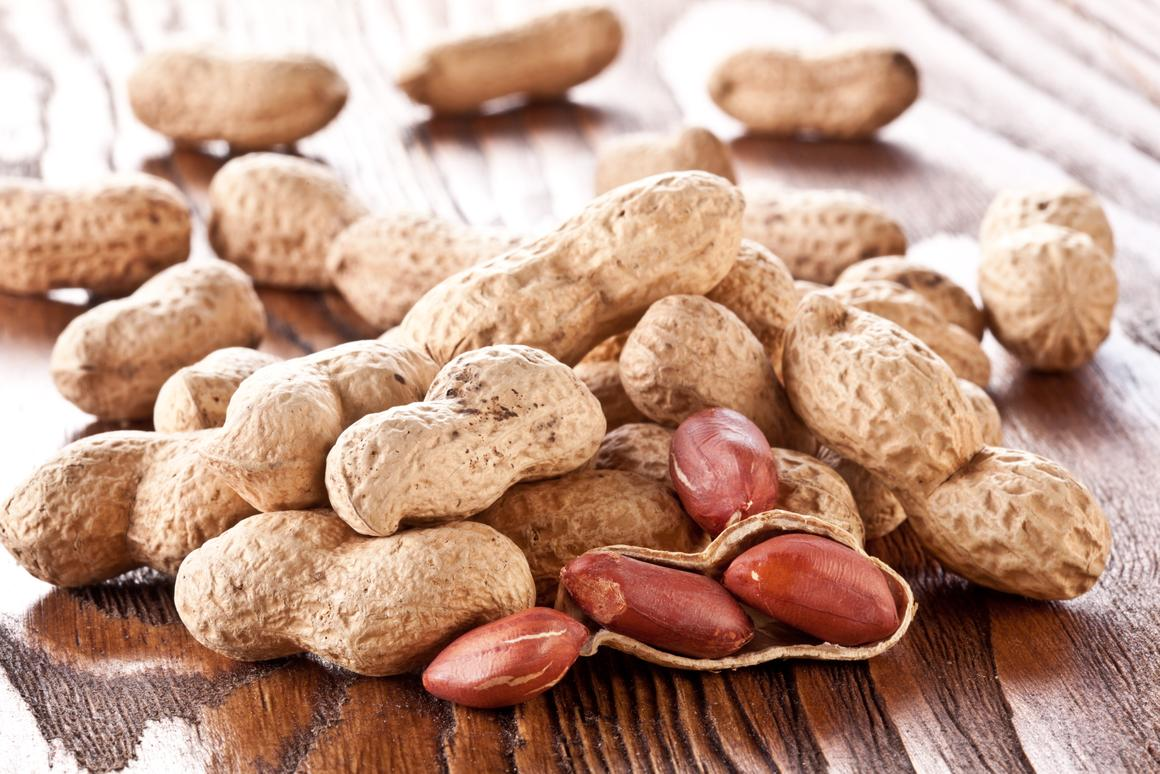 Medical scientists at Stanford University have set out to explore the potential of a drug called etokimab in treating peanut allergies
