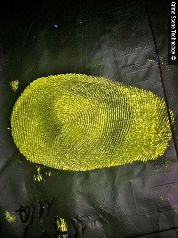 A Lumicyano-treated fingerprint on a plastic bag
