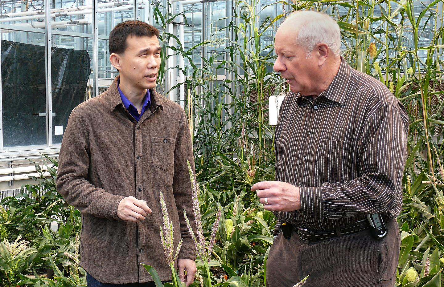 Researchers Yang Yang, left, and Cary Mitchell (Photo: Purdue University)
