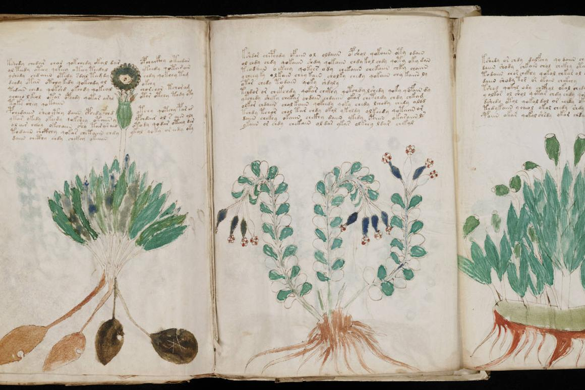 Two computer scientists are claiming to have created an algorithm that candecode the mysterious Voynich manuscript