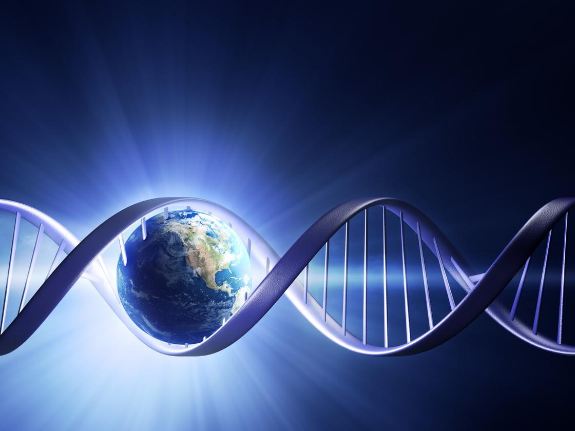 Extensiveresearchhasconcludedapproximately 40 percent of the studied conditions were primarily heritable
