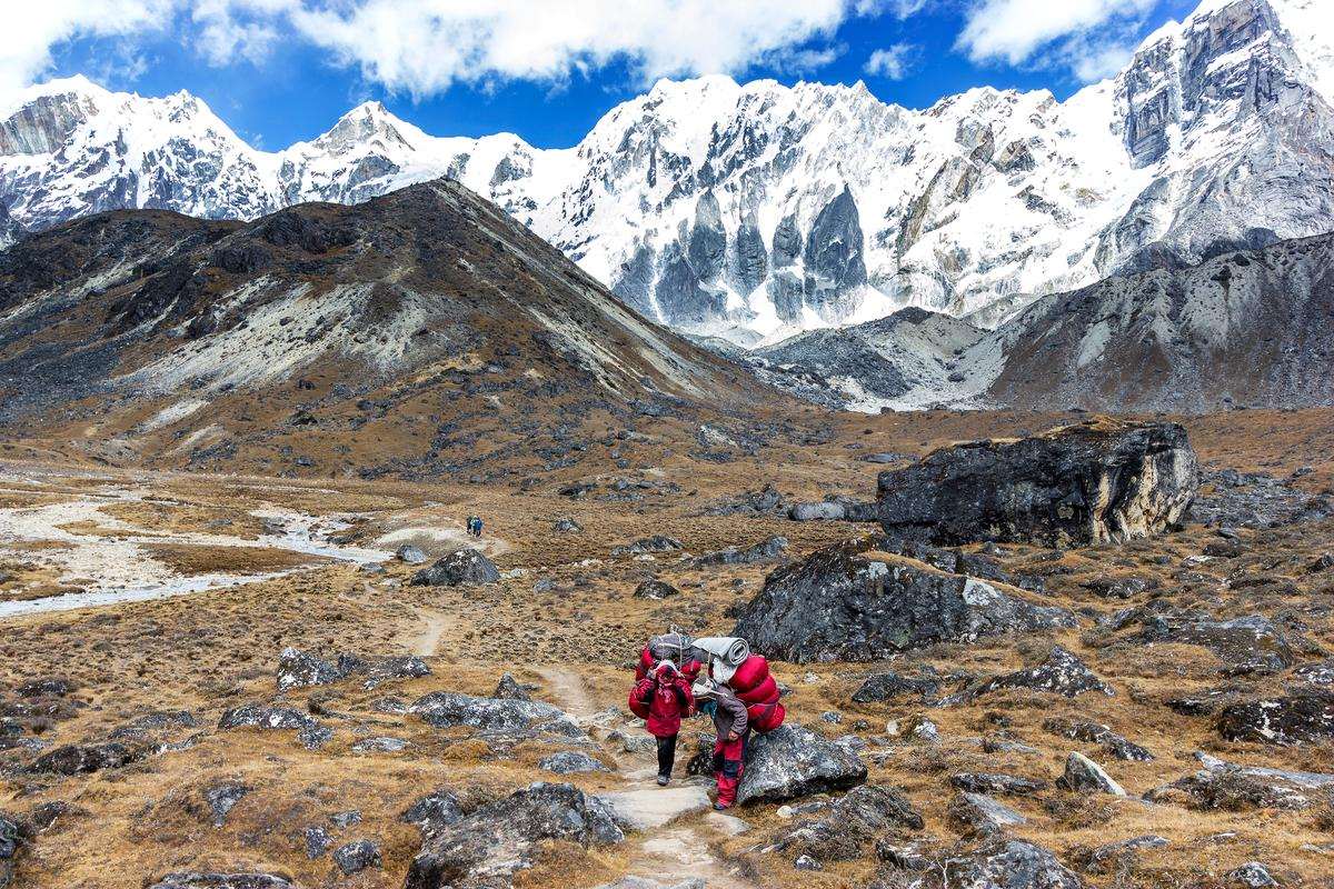 Low oxygen? No problem. A new study reveals how sherpas got their superhuman mountain climbing skills, a discovery that could help patients in intensive care units