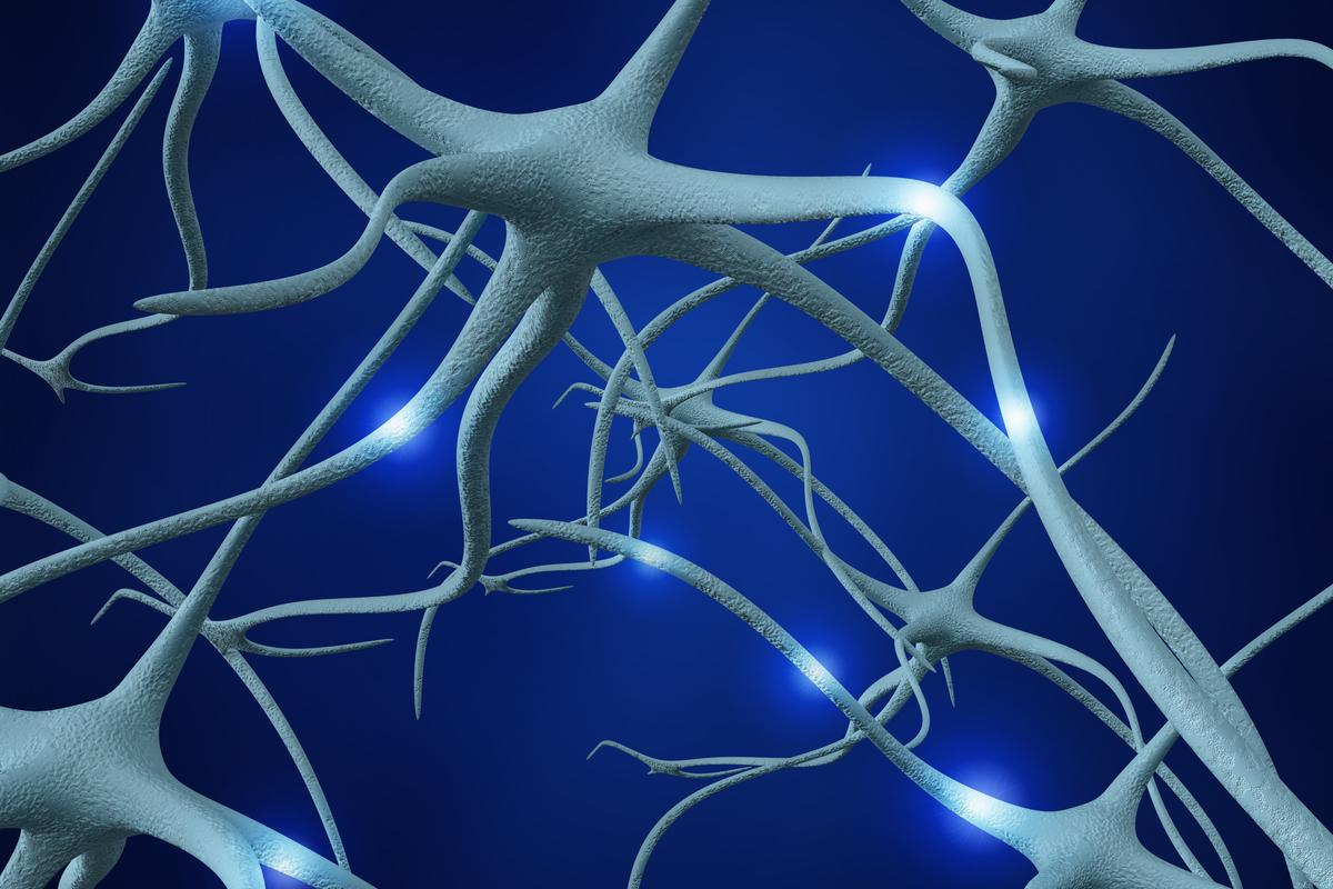New technology could facilitate the healing of damaged nerves (Image: Shutterstock)