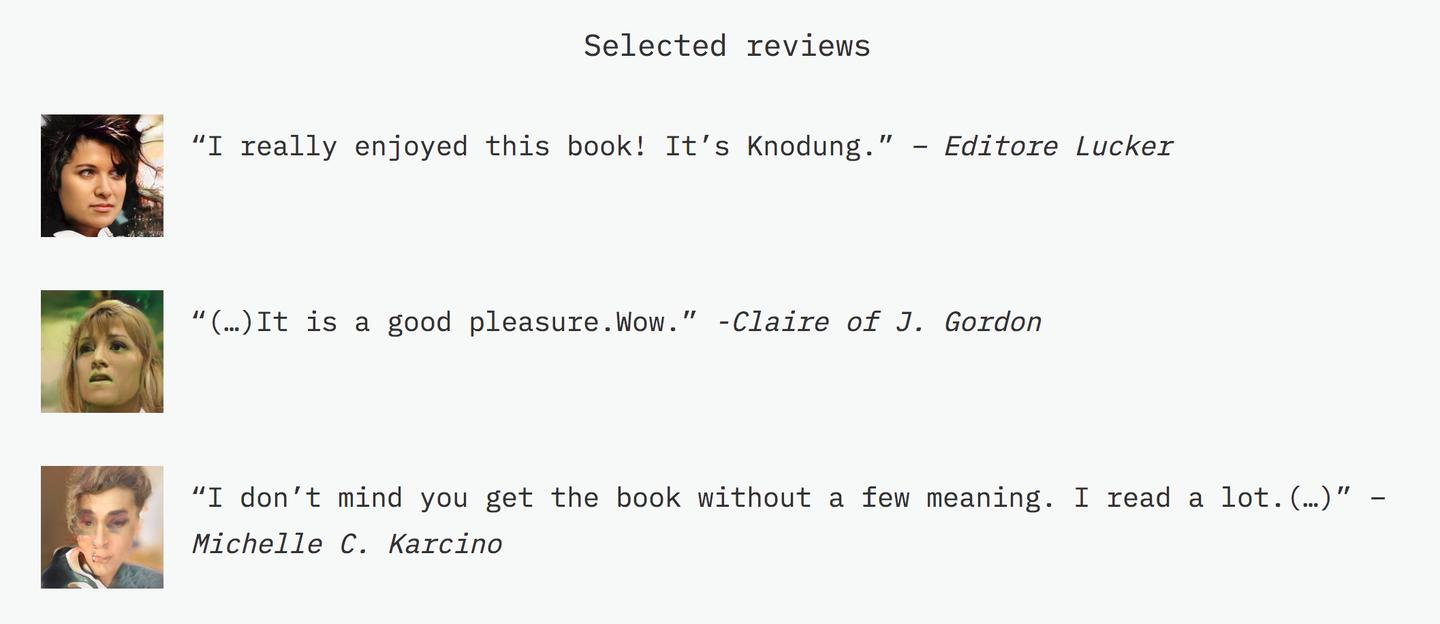 AI-generated reviews for a book called The Imperfect in the Disaster by Barreast Wolf