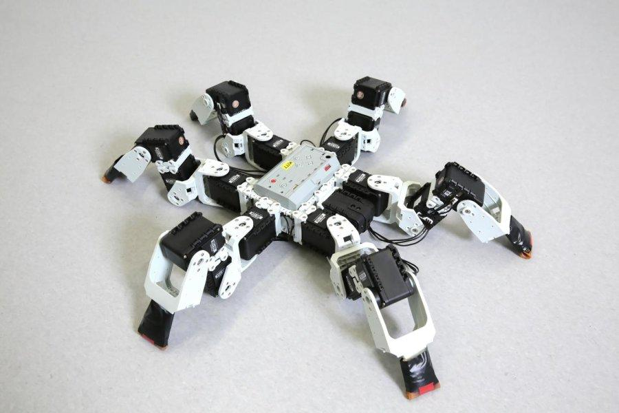 The robot that was used in the study